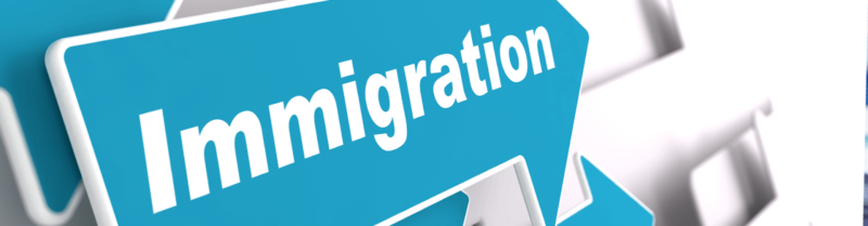 How Can Hiring An Immigrant Consultant Help?