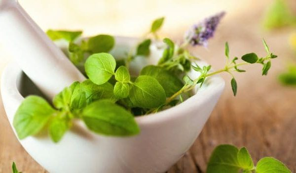 Ayurveda – Best Cure And Care To The Treatment